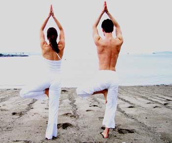 Two people doing Tree Pose
